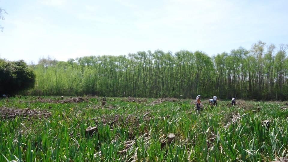 Charla forestal en Berisso sobre manejo y plantaciones del bosque nativo