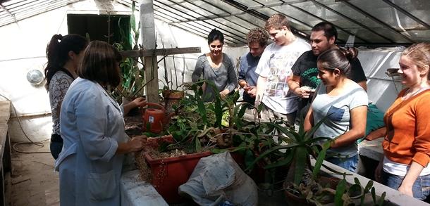 Comenzaron los cursos de jardiner a y de planificaci n y for Curso de jardineria
