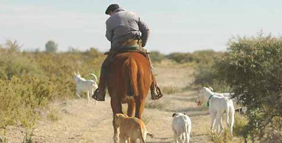 Jornada Trabajadores Rurales y Derecho Agrario