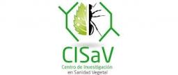 Nueva edición del Ciclo de seminarios del CISaV