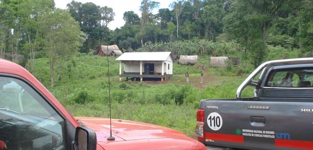Forestales en Misiones