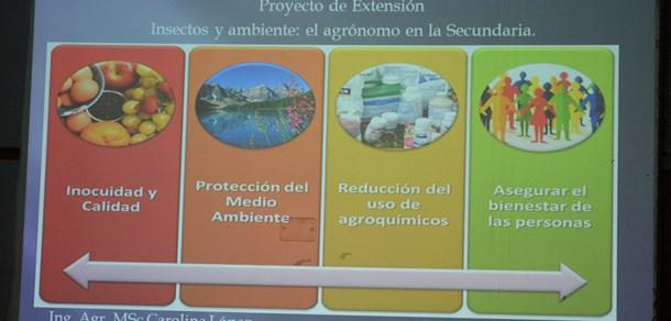 Concientización a estudiantes secundarios en la demanda de hortalizas saludables y el cuidado del ambiente