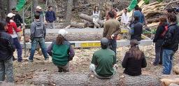 Encuesta para estudiantes, docentes y graduados de Ingeniería Forestal