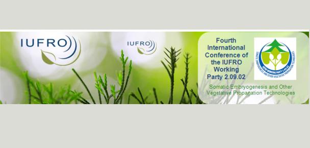 """Workshop""""Desarrollos y desafíos científico-tecnológicos de las empresas forestales"""""""