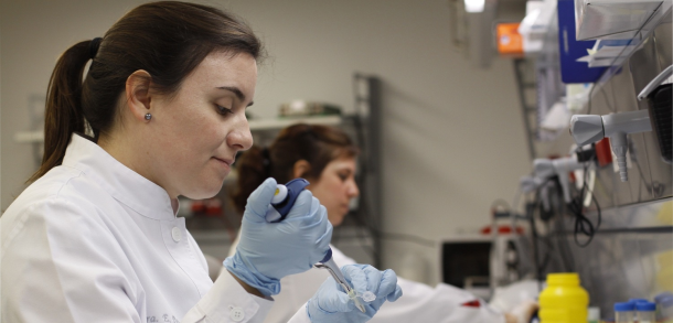 Convocatoria 2015 Programa de Becas de Experiencia Laboral