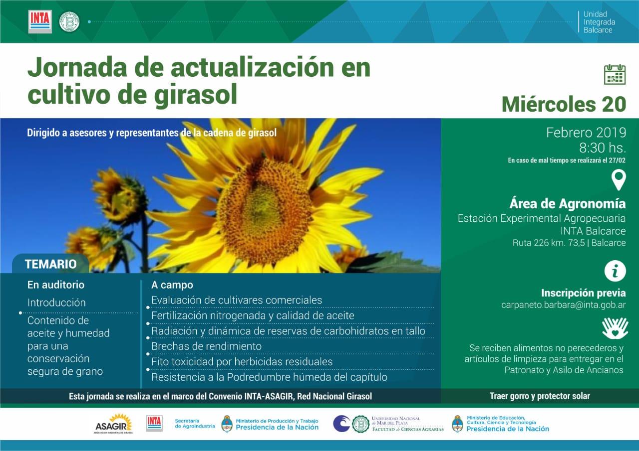 Jornada de actualización en cultivo de girasol