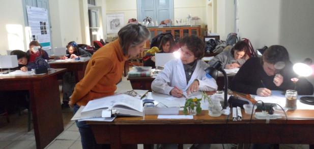 """Nueva  edición del Curso """"De la Observación a la Ilustración Científica Botánica"""""""