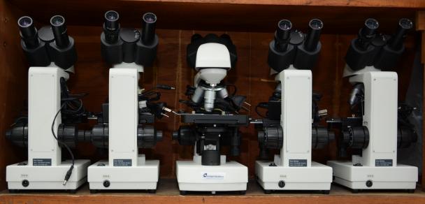 Nuevos microscopios