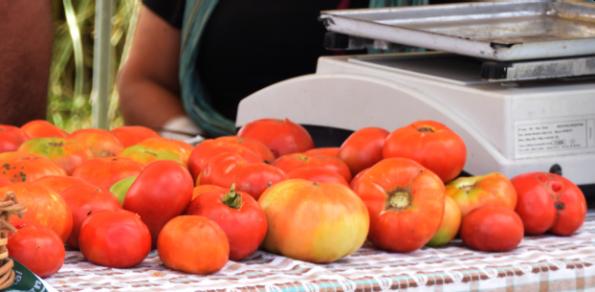 Festejamos a nuestro histórico Tomate Platense.