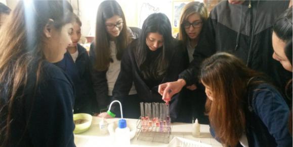 Proyecto de Articulación con Escuelas de Enseñanza Media