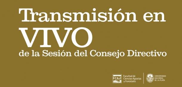 Sesión Ordinaria N°65 del Consejo Directivo