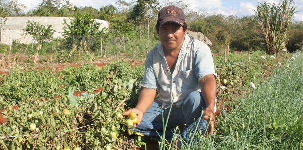 Inscripción de la Maestría en Economía Agroalimentaria