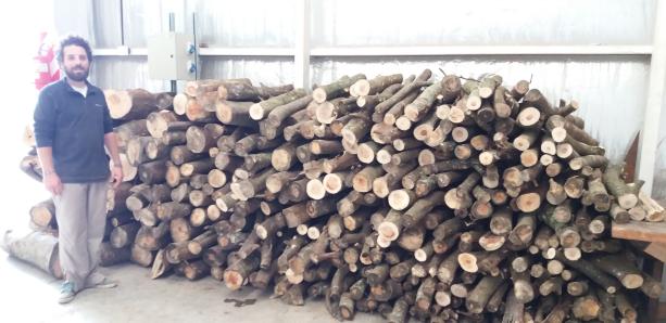 Aprovechamiento energético de madera de Acacia Negra
