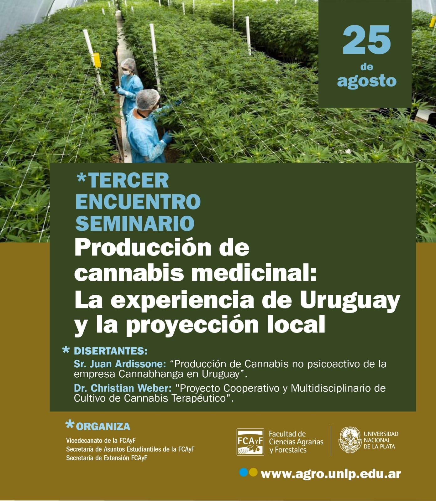 """SEMINARIO """"Producción de cannabis medicinal: La experiencia de Uruguay y la proyección local"""""""