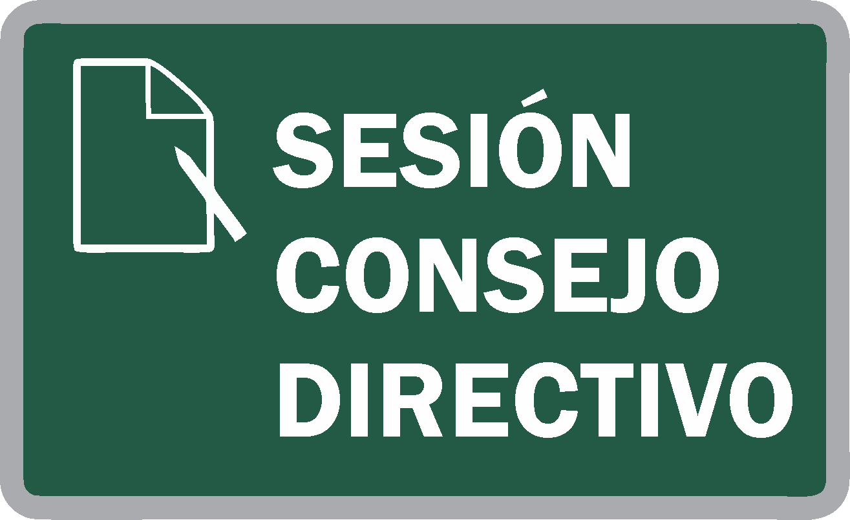 Sesión Extraordinaria N°17 del Consejo Directivo