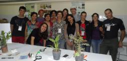 Nuevo curso de Ilustración Científica Botánica