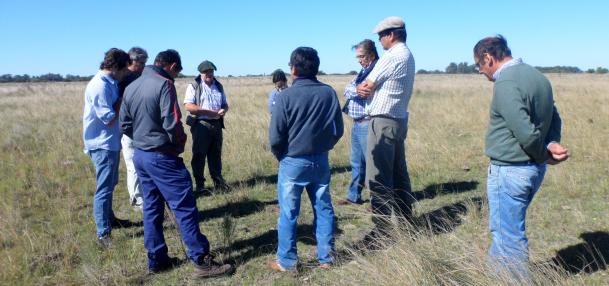 Recorrida de productores de Cambio Rural II de Castelli en el establecimiento El Amanecer-UNLP