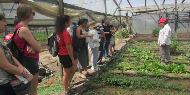 Visita de consumidores a productores  en transición agroecológica del CHP