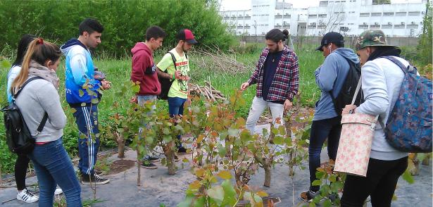 Estudiantes de  la Escuela Secundaria N° 53 visitaron el Vivero Forestal