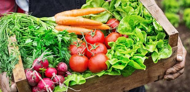 Encuestas a consumidores de hortalizas de la región