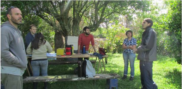 Alternativas de manejo en Viñedos de Uva Isabella: Poda e Injertos